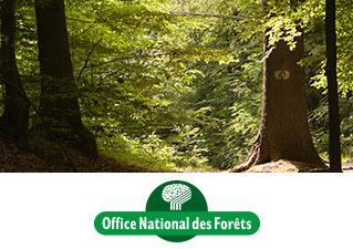Présentation Office national des forêts